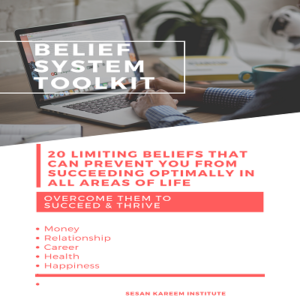 BELIEF SYSTEM TOOLKIT